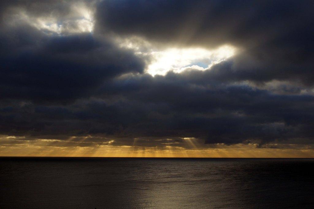 #227 - Morning rays