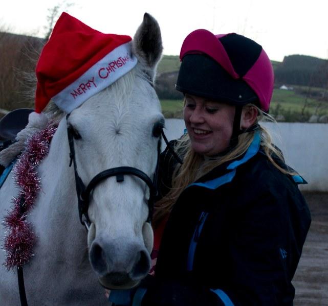 #284 - Christmassy pony