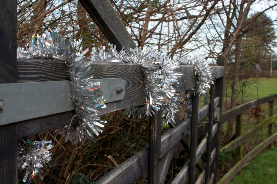 293 - Tinsel gate