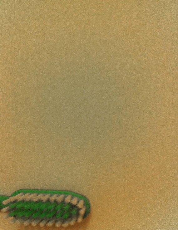#294 - Corner brush (02-01-13)