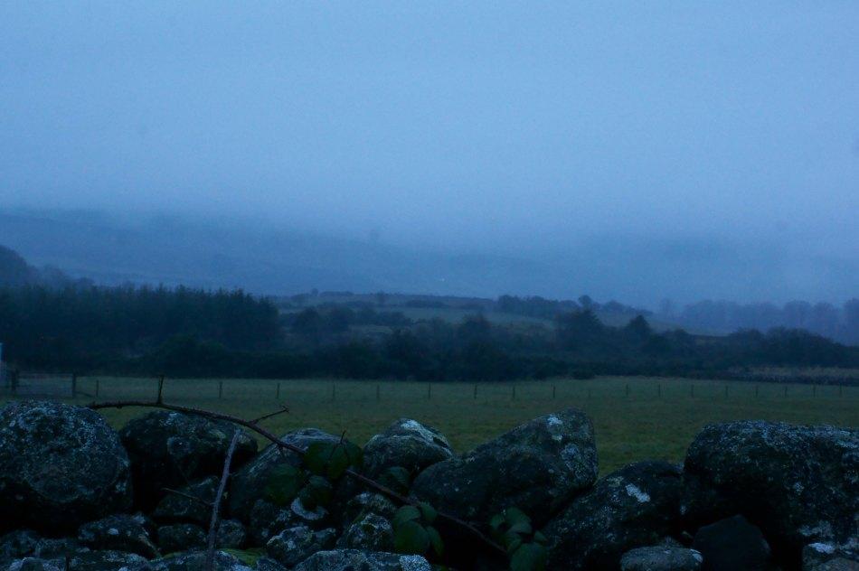 334 Evening Mist