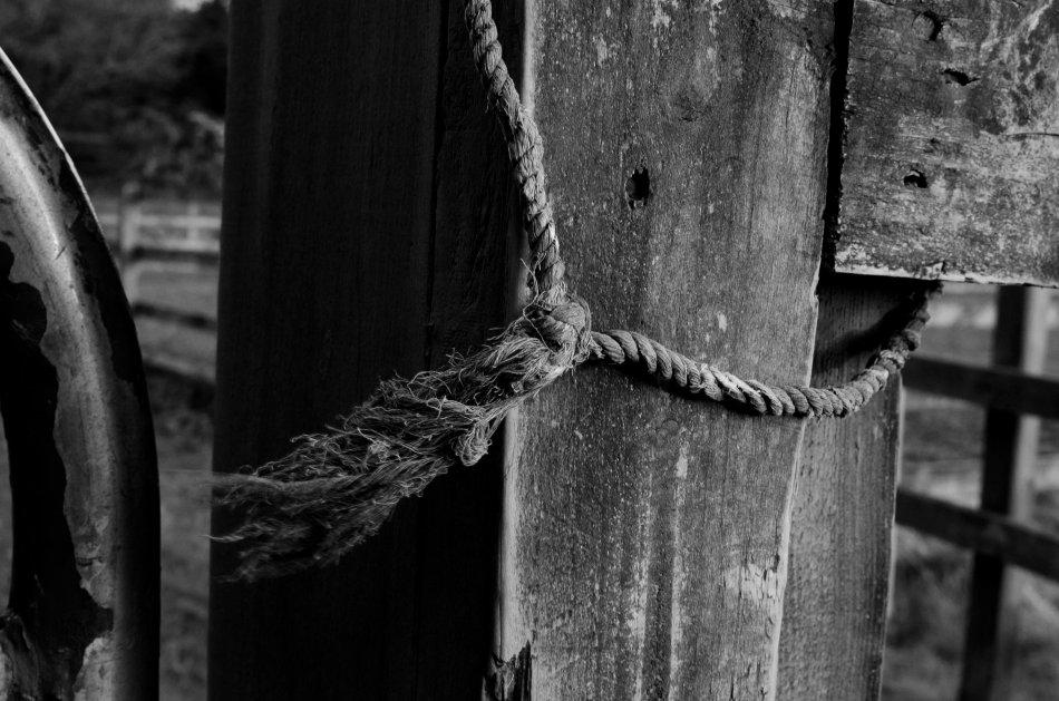 #97 - Frayed knot (06-04-16)