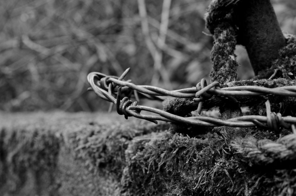 #121 - Barbed (30-04-16)