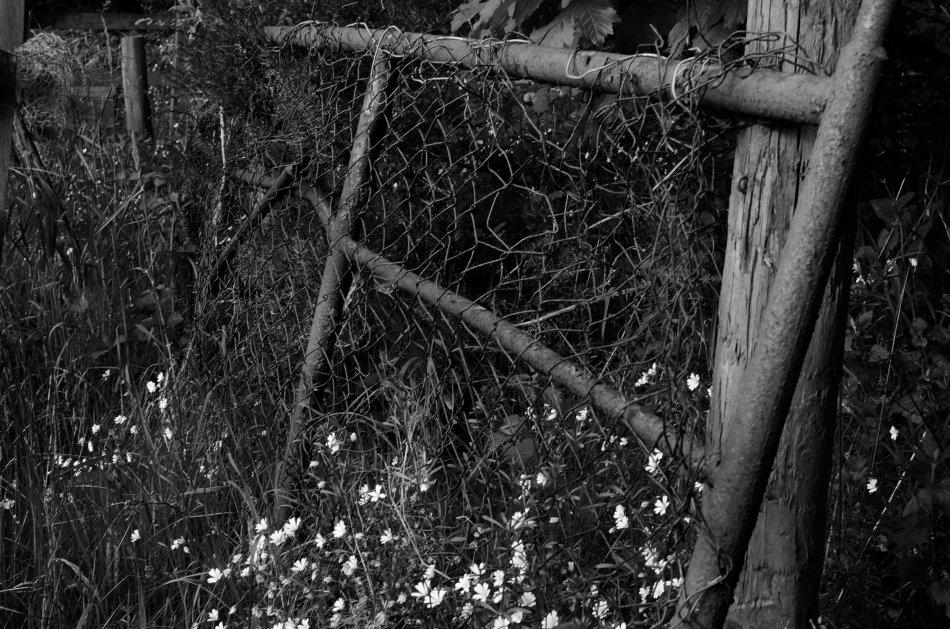 #157 - Retired gate (05-06-16)