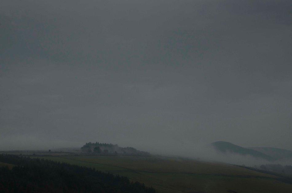 #229 - Fallen clouds (17-08-16)